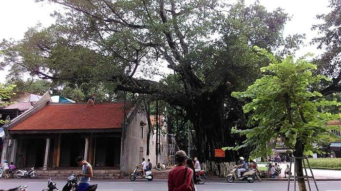 Xung quanh Hồ Gươm có nhiều phố cổ Hà Nội