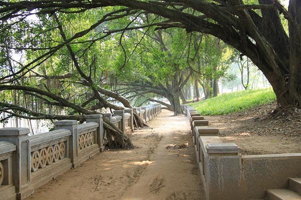 Công viên Thủ Lệ - một di tích lịch sử của mảnh đất nghìn năm văn hiến
