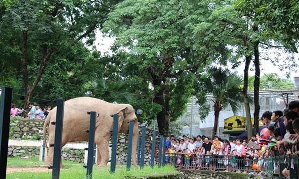 vườn thú trong công viên thủ lệ