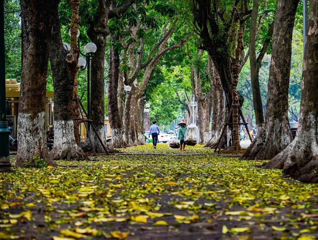 Khí hậu Hà Nội