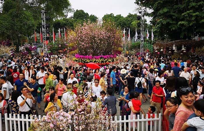 Lễ hội hoa anh đào Hà Nội thu hút hơn 30.000 du khách